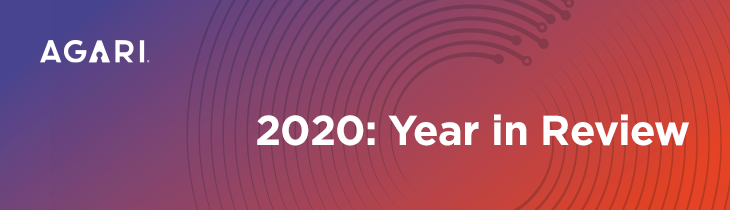 2020 Year in Review Banner